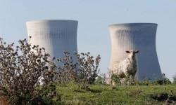 Pembangkit Listrik Tenaga Nuklir Iran Ditutup Sementara