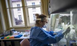 Benarkah Obat Kumur Nonaktifkan Virus Covid-19?