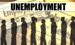 Semua Pihak Diharapkan Ikut Tekan Jumlah Pengangguran