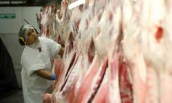 Selandia Baru Putus Asa Cari Tukang Daging Halal