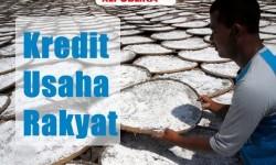 Pemerintah Catat Bank Penyalur Dana KUR Capai Rp 177,71 T