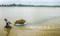 Pakar Ingatkan Pentingnya Peta Rawan Banjir