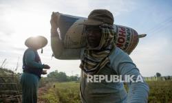 Polda DIY Alihkan Bantuan Membeli Beras Petani
