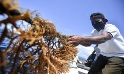 DPR RI Dorong Peningkatan Produktivitas Nelayan