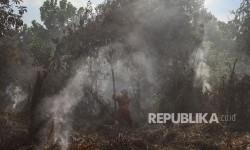 100 Hektare Lahan Gambut Terbakar di Bintan