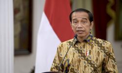 Jokowi Minta Menteri Terkait Bantu Penyediaan Obat-obatan