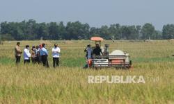 Jokowi Tegaskan Pemerintah tak Suka Impor Beras