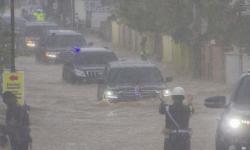 Jokowi Pastikan Penanganan Banjir Kalsel Berjalan Baik