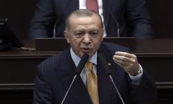 Erdogan: Gelombang Dua Vaksin Sinovac Siap Dikirim ke Turki