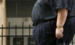 Obesitas Tetapi Sehat, Mungkinkah?