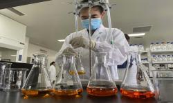 Jokowi Minta Vaksin Covid-19 Dipersiapkan Secara Baik