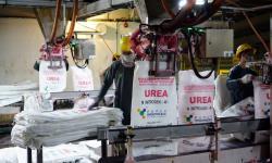 Pupuk Indonesia Beri Rp 29 M untuk UMKM dan Bina Lingkungan