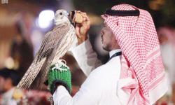 210 Burung Alap-Alap Berkompetisi di Festival Arab Saudi
