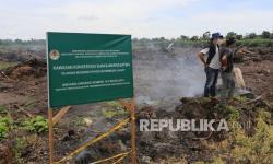 In Picture: Perambahan Kawasan Suaka Margasatwa Rawa Singkil