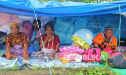 In Picture: Tempat Pengungsian Korban Gempa di Mamuju