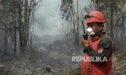 Walau Sudah Padam, Titik Api Terus Bermunculan