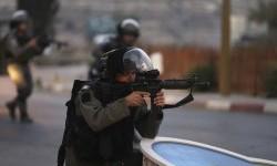 Detik-Detik Pembunuhan Keji Penyandang Autis oleh Israel