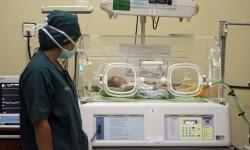 8.000 Pasien Bayi Tabung Keluar Negeri Tiap Tahun