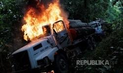Deforestasi Hutan Amazon Terus Meningkat