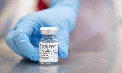 India Kirim Vaksin AstraZeneca Gratis ke Sri Lanka