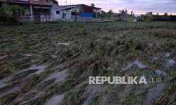 Lima Korban Meninggal Banjir Deli Serdang Dimakamkan