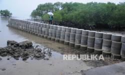 BNPB: Ekosistem Garis Pantai Penting Cegah Tsunami