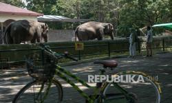Gembira Loka Zoo Tolak Seratusan Pengunjung dalam Sehari