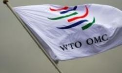 Delapan Negara Bertarung Memperebutkan Posisi Pimpinan WTO