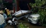 Mobil Taruna yang ringsek tertimpa pohon di Surabaya.