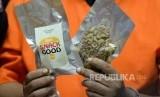 Magic mushroom, narkoba jenis baru. BNNP Bali mencegah peredaran narkotika jenis mushroom dengan menggandeng desa adat.