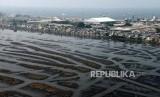 Suasana Waduk Pluit saat airnya menyusut di Jakarta, Selasa (11/6).