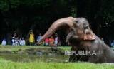 Taman Margasatwa Ragunan membuka semua loket pelayanan tiket jelang libur tahun baru.