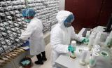 China terbuka untuk kerja sama internasional untuk mengidentifikasi sumber virus Covid-19 (Foto: ilustrasi penelitian virus Covid-19)