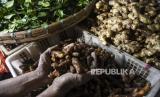 Pedagang menunjukkan rempah-rempah dagangannya di Pasar Ciroyom, Kota Bandung, Senin (16/3).