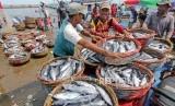 Nelayan membongkar muat ikan jenis tongkol (Euthynnus sp) hasil tangkapan nelayan di Pelabuhan Pendaratan Ikan (PPI) Samudera, Banda Aceh, Aceh, Selasa (8/10/2019).
