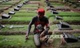Penjaga makam beraktifitas di Tempat Pemakaman Umum (TPU) Pondok Ranggon, Cipayung, Jakarta, Minggu (30/12).