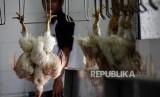 Ilustrasi Rumah Pemotongan Unggas. Pemerintah Jakarta Timur merelokasi 24 tempat usaha pemotongan unggas jenis ayam di Kecamatan Matraman dan Pulo Gadung menuju Rawa Teratai, Kamis (29/1).