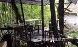 Lokasi wisata Rumah Pohon Temega di Desa Padang Kerta, Karangasem, Bali.
