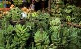 Pembeli memilih buah pisang di salah satu pasar tradisional di Makassar, Sulawesi Selatan, Selasa (7/5/2019).