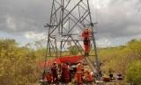 Sejumlah pekerja PT PLN (Persero) melakukan perawatan jaringan listrik, ilustrasi.