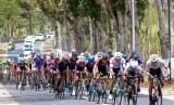 Balap sepeda (ilustrasi). Kejuaraan dunia balap sepeda tahun ini di Swiss ditunda akibat Covid-19.