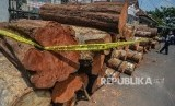 Barang bukti ratusan kayu gelondongan yang yang ditebang oleh pelaku pada gelar perkara kasus pembalakan liar di Mako Polres Ciamis, Jawa Barat, Jumat (6/12/2019).