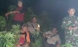 Jajaran Polres Garut menemukan 25 tanaman pohon ganja di sebuah lereng perbukitan.