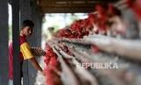 Pekerja mengutip telur ayam ras di kandang UPTD Balai Ternak Non Ruminansia (BTNR) Dinas Peternakan Provinsi Aceh, Blang Bintang, Aceh Besar, Aceh, Kamis (27/2/2020).