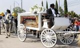 Peti jenazah yang membawa jasad George Floyd tiba dengan kereta kuda di Houston Memorial Gardens untuk pemakamannya di Pearland, Texas, AS, Selasa (9/6). Video CCTV yang diposting online pada 25 Mei, memperlihatkan George Floyd (46) memohon kepada petugas yang menangkapnya bahwa dia tidak bisa bernapas saat seorang petugas berlutut di lehernya. Pria kulit hitam tak bersenjata itu kemudian meninggal dalam tahanan polisi dan keempat petugas yang terlibat dalam penangkapan itu telah didakwa dan ditangkap.