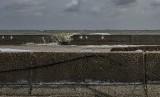 [Ilustrasi] Air laut bergerak naik melewati Tanggul Proyek Terpadu Pesisir Ibu Kota Negara atau National Capital Integrated Coast saat terjadi pasang di Muara Baru, Jakarta.