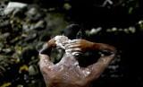 Angel Sanchez mandi di sungai Taman Nasional El Avila di Caracas, Venezuela,Rabu (3/4). Akibat krisis air, warga menyerbu kawasan hutan tersebut.