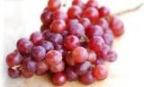 Anggur (ilustrasi)
