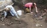 Sebuah fosil mirip kaki seribu di Skotlandia diduga jadi hewan darat tertua di dunia (Foto: ilustrasi peneliti yangf menemukan fosil)