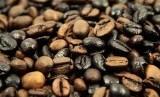 Biji kopi. Ilustrasi